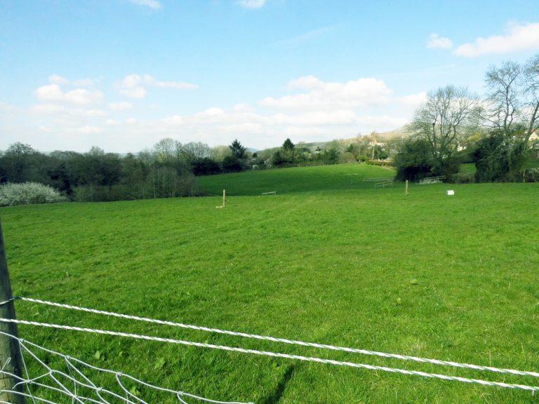 field_6