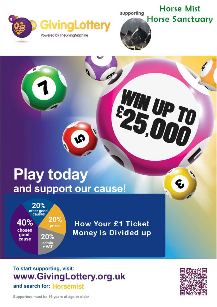 play-givinglottery---image